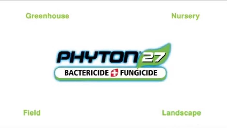 Fungicida y Bactericida Phyton 27