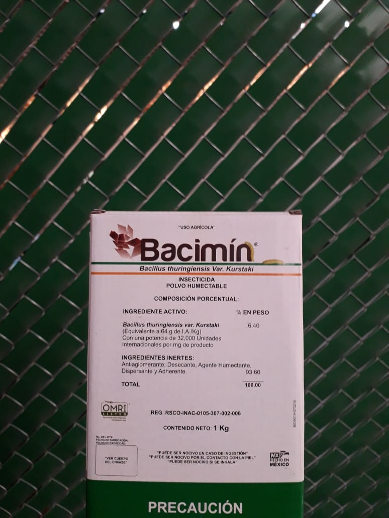 Bacimin