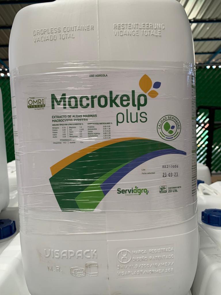 Macrokelp Plus 12×1